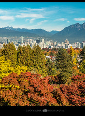 Fall colours in Vancouver, BC, Canada (Ann Badjura Photography) Tags: queenelizabethpark vancouver britishcolumbia bc canada fall autumn downtownvancouver 604now miss604 24hrvancouver georgiastraight insidevancouver vancitybuzz ctvphotos photonewsgallery colourfulvancouver photography annbadjura mountains view scenery landscape iamcanadian pacificnorthwest pnw pacificnw