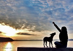 Migliore amico (ioriogiovanni10) Tags: panorama clouds cielo nuvole sky colore amico femme girl dog coolpix lagodibracciano anguillara lago lake nikon