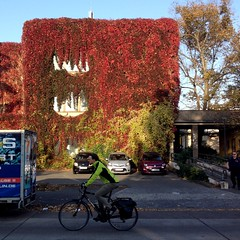 Wandbehang, großstädtisch / Buchberger Straße / Lichtenberg / 2018 (galibier2645) Tags: durchlatscher durchradler fahrrad wandbehang fassade buchbergerstrase lichtenberg cube mann berlin parkplatz adidas kleinwagen bewachsen