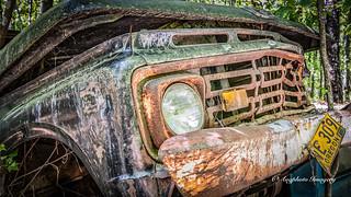 Old Car City 169