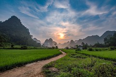 Mai Village Morning (Rod Waddington) Tags: vietnam vietnamese mai ethnic ethnicity minority sunrise village landscape rice crop farming karst clouds north path trees mist