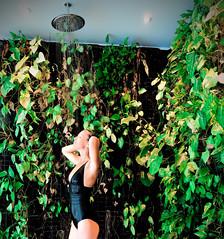 Pluie fine ! (Steph Land) Tags: spa zen wellness piscine debordement pool hostellerielacheneaudière hostellerie lacheneaudiere laheneaudière cheneaudière cheneaudiere overflowing swimming ciel forêt arbre eau paysage bois montagne zeiss zeisslens carlzeisslenses carlzeiss calme pelouse personnes