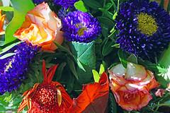 Mal was Buntes (klausi56) Tags: bunt farbe natur blumen