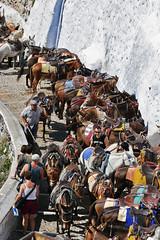 Santorini_2007_08_182 (Бесплатный фотобанк) Tags: греция греческая республика санторини остров