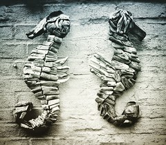 WOODEN SEAHORSES > #picoftheday  #nice #blackandwhite #jeans #details #handmade #moment #art #love #dream #workout  #photography #fashion #style #image #woman (valter.celato) Tags: picoftheday nice blackandwhite jeans details handmade moment art love dream workout photography fashion style image woman