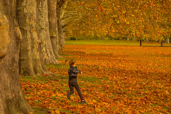 Saltando nell'Autunno / Jumping in Autumn (St James's Park, London, United Kingdom) (AndreaPucci) Tags: park stjamess london autumn uk baby girl andreapucci leaves
