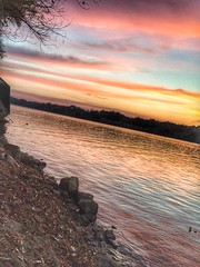 Vll (ivanaradovic7) Tags: effect effects orange gold yellow river sava sunset sunsets sun sky tree trees waves water sunnyday peaceful quiet relaxing trip travel