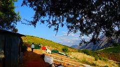 DSC06044 (omirou56) Tags: 169ratio sonydschx60v trees sky landscape greece ελλαδα ουρανοσ δεντρα σκιεσ