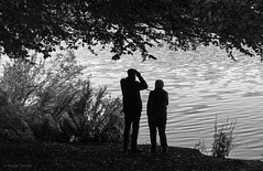 WATCHING the LAKE, CLUMBER PARK, NOTTINGHAMSHIRE_DSC_2252_LR_2.5 (Roger Perriss) Tags: clumberpark blackandwhite watching looking standing couple people lake water bank lakeside rippling binoculars oldercouple monochrome silhouette foliage