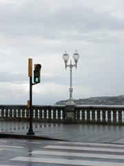 Street Roles (marco_albcs) Tags: gijón xixón asturias spain espana street calle lights lampsstreetlamp minimal crossing crosswalk passadeira rainy green walk trafficlights