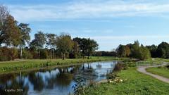 De Schipbeek bij Bathmen - Overijssel. (Cajaflez) Tags: bomen herfst herbst autumn autun fietspad cyclepath schipbeek bathmen overijssel coth5