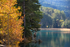 the lake (athanecon) Tags: doxa lake doxalake firs firtrees plane forrest planetree feneos