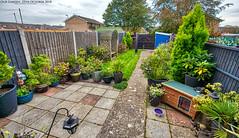 Our Garden - 25th October 2018 (AreKev) Tags: our garden backgarden whitchurch bristol england uk nikond7100 nikon d7100 aurorahdr2018 aurorahdr hdr sigma 1020mm 1020mmf456exdchsm