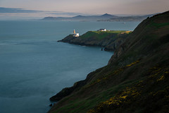 Baily Lighthouse Ireland (ronnevinkx) Tags: bloei dublin geel gelebloemen ierland iersezee landschap vuurtoren zee