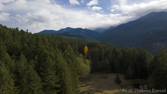 Olympic National Forest 0037 (All h2o) Tags: olympic national forest pacific northwest nature mountains sky clouds landscape mavic pro two dji drone peninsula washington state mountain wood mountainside tree
