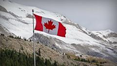 Waving red (Jasper NP, Canada) (armxesde) Tags: pentax ricoh k3 canada kanada alberta rockymountains jasper jaspernationalpark berg mountain schnee snow flag flagge fahne columbiaeisfeld columbiaicefield