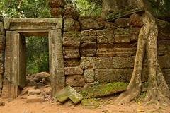 _DSC5215.jpg (pkelly03@verizon.net) Tags: religiousbuilding 2017 continent asia siemreap where cambodia taprohm temple