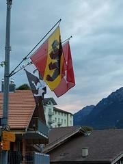 Wilderswil scenes 87 (SierraSunrise) Tags: switzerland wilderswil europe flags bear
