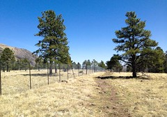 Disappointment just ahead... 20180409_9365 (listorama) Tags: usa arizona flagstaff phone battery buffalopark