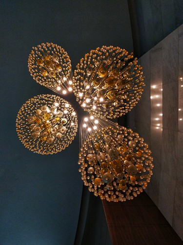 Lights & Circles