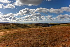 Slendid view from up here! (Missy Jussy) Tags: view scenery moors moorland reservoir readycondeanreservoir water hills grass sky bluesky clouds landscape lancashire land outdoor outside countryside walkinglandscape dogwalk 24mm ef24mmf28 canon5dmarkll canon5d canoneos5dmarkii canon