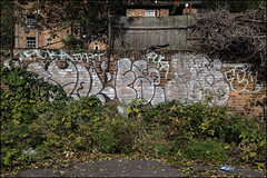 Famos / Arxs (Alex Ellison) Tags: famos veg fops arxs yrp throwup throwie southlondon urban graffiti graff boobs