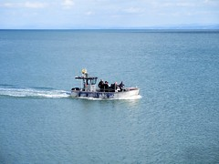 SeaMor boat trip, New Quay (pefkosmad) Tags: ceinewydd newquay wales ceredigion cardiganbay seaside town resort fishing dolphinwatching