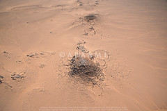 (Jebel Kabid Enclosures 1 (APAAME) Tags: aerialarchaeology aerialphotography middleeast airphoto archaeology ancienthistory