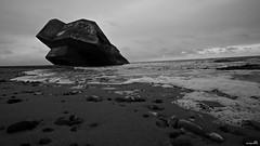 Le nez dans l'eau. (Un jour en France) Tags: monochrome mer plage sable galet bunker hourdel leshautsdefrance picardie somme canoneos6dmarkii canonef1635mmf28liiusm noiretblanc noiretblancfrance ciel océan côte rivage paysage vague