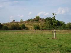 Anglų lietuvių žodynas. Žodis dead fence reiškia miręs tvora lietuviškai.