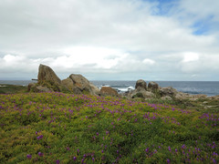 IMG_1759ed (floripic) Tags: landscape sky sea rock bay coast california