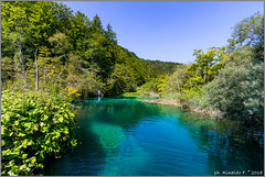 plitvice.national.park.2@croatia (Rinaldofr) Tags: canon6dmkii canonef1635f4is plitvice nationalpark nature lake water leaf tree blue sky