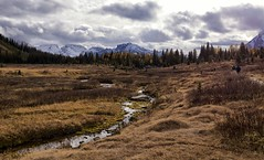 Not all who wander are lost. (chris.ph) Tags: chesterlake kananaskiscounty alberta sky clouds evening light landscape people hiking mountain trees larch canon6d creek ef1635mmf4lisusm kelleyandtracey