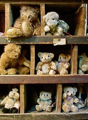 Old Fashioned Teddy Bears (Trippin' TIki) Tags: teddybears bear old vintage antique toy stuffed animal store bears cute