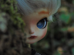 Citrouille/Hide and Seek (NewBodyArts) Tags: pullip doll picture dollfc pullipfc unique mypicture nofilter
