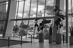 Nashville-46 (Tasmanian58) Tags: nashville street vintage building ancient architecture glass clouds zeiss loxia 50mm 250mm sony a7ii urban windows blackwhite bw nb noirblanc