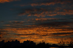 Sunrise 10 21 2018 #01 (Az Skies Photography) Tags: sun rise sunrise morning dawn daybreak sky skyline skyscape clouds cloud rio rico arizona az riorico rioricoaz arizonasky arizonaskyline arizonaskyscape arizonasunrise red orange yellow gold golden salmon black canon eos 80d canoneos80d eos80d canon80d october 20 2018 october202018 102018 10202018
