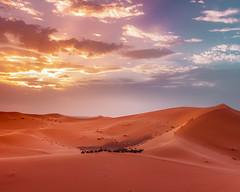 Magical Sahara Sunset in Morocco (T is for traveler) Tags: yellow travel traveler traveling tisfortraveler tourist tourism backpacker exploration destination canon 700d 1855mm sahara desert morocco merzouga dunes sand tour sky magic oasis