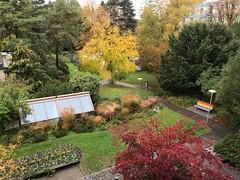 Autunno 🍂 a Zurich (CANETTA Brunello) Tags: pioggia natura colori autunno zurigo