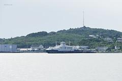 """Tranøy"" (OlafHorsevik) Tags: tranøy torghattennord thn ferge ferga ferry ferja ferje lødingen"