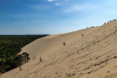 Dune du Pilat (gael.lamirand) Tags: vegetation france dune nature ciel nouvelleaquitaine matières sable forêt bleu couleurs dunedupilat europe univers gironde latestedebuch fr