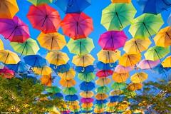 Some (gusdiaz) Tags: umbrella umbrellas coralgables florida summer vacation colorful flipflops sandalias sombrilla sombrillas colorido fuji fujifilm xt2 wideangle gorgeous memories recuerdos asoleado sunny cielo sky azul blue