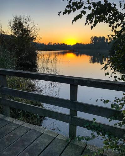 Zuigerplas Lelystad (11-10-2018).