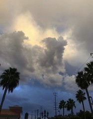 Might actually get some rain tonight and tomorrow. Be careful driving out there. #sky #skysnappers #cloudy #bluesky #sunset #rainclouds #palmtrees #colorful #colorfulsky #atmosphere (Jordon Papanier) Tags: sky skysnappers cloudy bluesky sunset rainclouds palmtrees colorful colorfulsky atmosphere