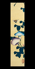 Japanese morning glory (Japanese Flower and Bird Art) Tags: flower morning glory ipomoea nil convolvulaceae beika yamaoka nanga woodblock print japan japanese art readercollection