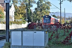 Railway Bipper Lisi 15.10.2018 (tabbynera) Tags: railway