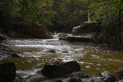 DSC_5830 (griecocathy) Tags: cascade roche arbre eau ruine végétations beige gris marron blanc vert brun