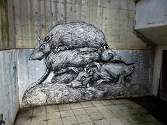 ROA / Strombeek - 12 oct 2018 (Ferdinand 'Ferre' Feys) Tags: bxl brussels bruxelles brussel belgium belgique belgië streetart artdelarue graffitiart graffiti graff urbanart urbanarte arteurbano ferdinandfeys roa