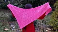 2018-10-30 18.51.21 (AdrienneC) Tags: knits knitting shawl scarf aeris thepluckyknitter theyarniad bellodk merino cashmere lawnornament
