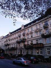 2018-09-21 12.29.19 1 (Nina Noleto) Tags: building architecture sky street tree window reflection sunlight